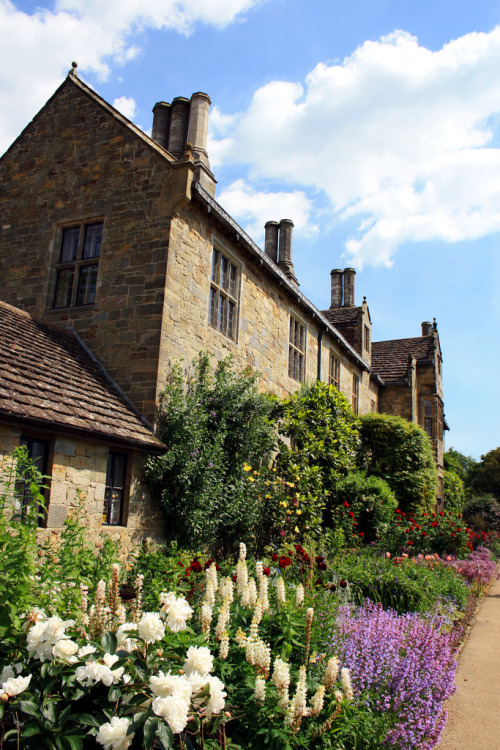 21vines:  Wakehurst place (by Miflandia)