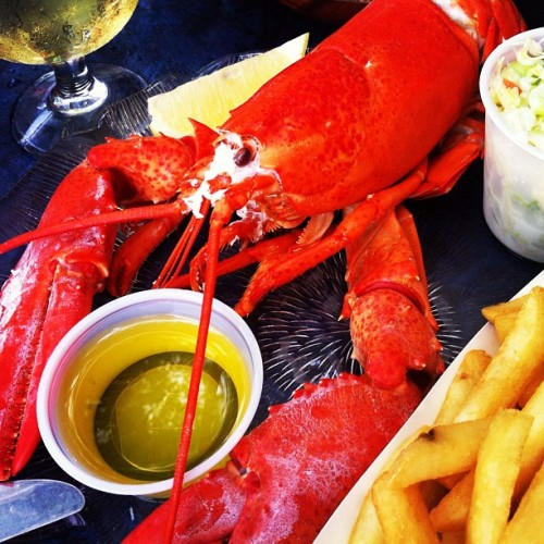 Lobster time on the Boston Harbor  (Taken with Instagram)