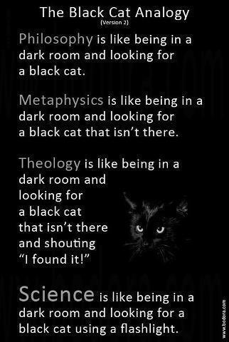 (via The black cat analogy | Seemingly So)