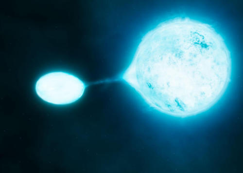 Brightest Stars Don't Live Alone: Most Stellar Heavyweights Come in Interacting Pairs, VLT Finds ScienceDaily (July 26, 2012) — A new study using the European Southern Observatory's Very Large Telescope (VLT) has shown that most very bright high-mass stars, which drive the evolution of galaxies, do not live alone. Almost three quarters of these stars are found to have a close companion star, far more than previously thought. Surprisingly most of these pairs are also experiencing disruptive interactions, such as mass transfer from one star to the other, and about one third are even expected to ultimately merge to form a single star. Continue Reading