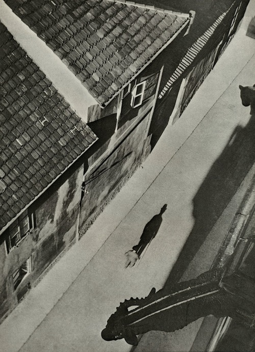 Josef Sudek  Vicar's Lane, Prague, Undated From Poet of Prague: A Photographer's Life