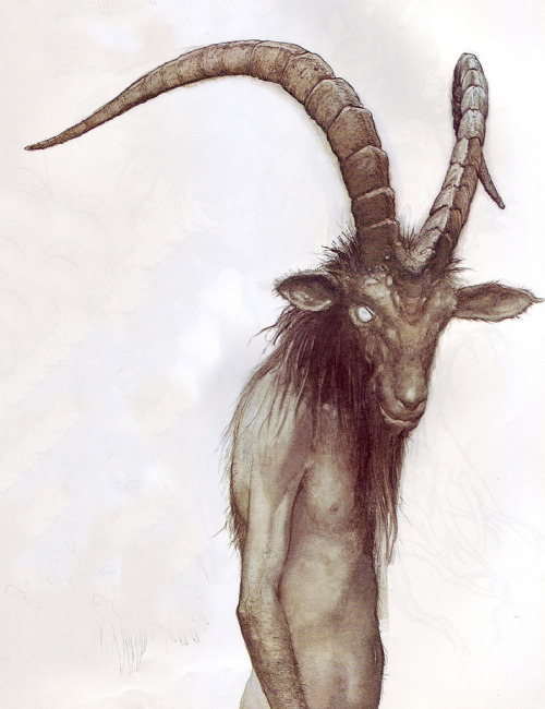loveismyjudge:  this is probably my favourite brian froud drawing after frog queen I think.