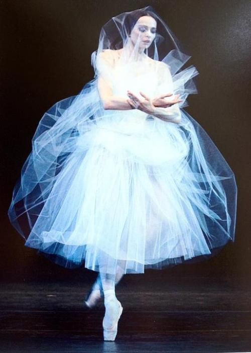 benitah:  Diana Vishneva as Giselle.