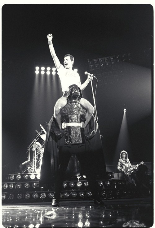 ladyevangelistacain:  Freddie Mercury is riding Darth Vader's shoulders.  Your argument is invalid.