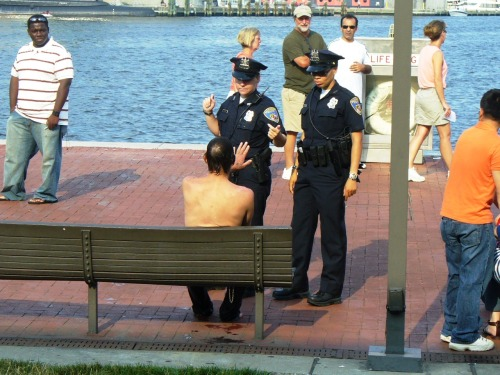 Police Officer 1: Sir, you cannot just jump into the bay. Man: Why not? Police Officer 2: The bay is for boats only, sir. That's very dangerous. Man: And what if I am a boat? Police Officer 2: You are clearly not a boat. Man: I've always wanted to be a boat. You can't try to crush my dreams. Police Officer 1: We're not trying to crush your dreams, sir. We're just looking out for the general public and enforcing laws. Man: Are you? Because it seems like you're just trying to ruin my fun. Police Officer 1: Sir, please, we need you to cooperate. Man: Let me ask you something. Police Officer 2: What is it? Man: When you were a child, did you always want to be a police officer? Police Officer 1: I don't think that's relevant, sir, and… Man: (to Police Officer 1, snapping) Hush. Let her answer. (to Police Officer 2) Did you always want to be a police officer? (Police Officer 2 hesitates for a moment) Man: Answer the question. It's not a difficult question. I wanted to be a boat. I still want to be a boat. What did you want to be? (Police Officer 2 is silent, then chokes back tears) Police Officer 2: N-no. I… didn't. Police Officer 1: … Miranda? Are you all ri-… Police Officer 2: No, I didn't! I didn't want to be a police officer, and every time I put on this uniform, I can't even look at myself! I've been living a lie, and I'm disgusted with myself! Man: That's right! And what did you want to be? Police Officer 2: Dammit, I wanted to be a boat too! And nothing's gonna stop me from living my dream! Not this uniform, and not anything! (Police Officer 2 strips off her uniform and throws it to the ground. Police Officer 1 bears a shocked look on her face as both Police Officer 2 and Man grab each others' hands. Police Officer 2 and Man jump into the bay.) Black Man: The hell did I just watch? SCENE