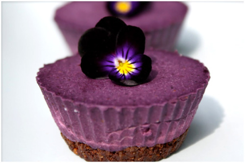 wildjackalopes:  fuckyeahveganlife:  raw blueberry cardamom cheesecake  WANT. But most of these ingredients can't be found here, and living in Brazil doesn't help with the blueberries at all. Maybe I'll try a blackberry one and improvise….?