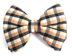 eclecticvixxen:  plaid bow tie