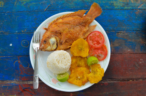 Lunch and Dinner for 3 weeks on the North Coast of Colombia