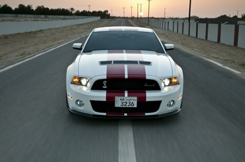 fuckyeahcargasm:  Muscle. Featuring: Ford Mustang GT Shelby 500
