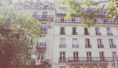 perfectmadness:  this is paris. (by Kristine May.)