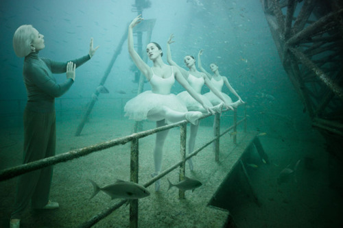 "minusmanhattan:  Ballet Master by Andreas Franke from her series ""Life Below the Surface."""