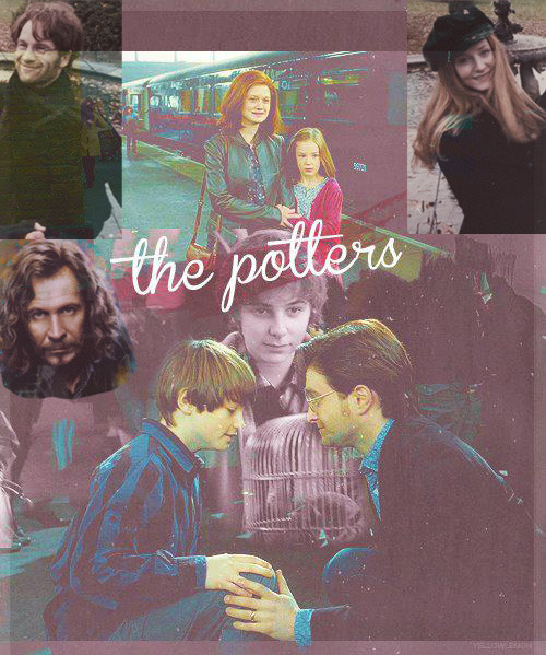hp-maniac:  The Potters… For all meaningful purposes, Sirius was a Potter :')