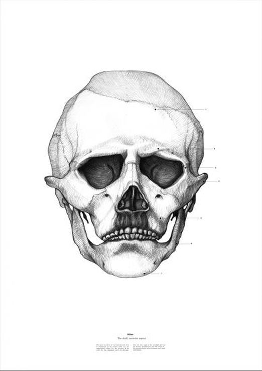 (via Flavorwire » Andy Warhol, Lenin, and Lennon Skull Caricatures)
