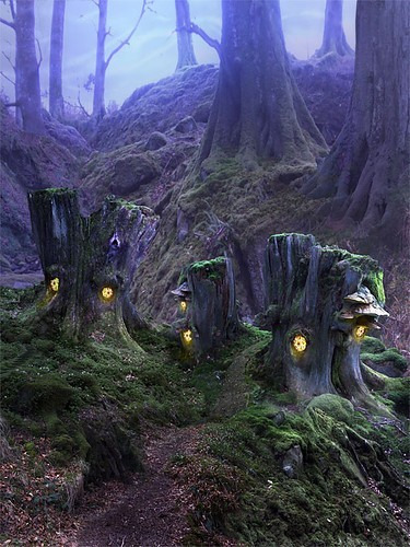 Where the faeries live.