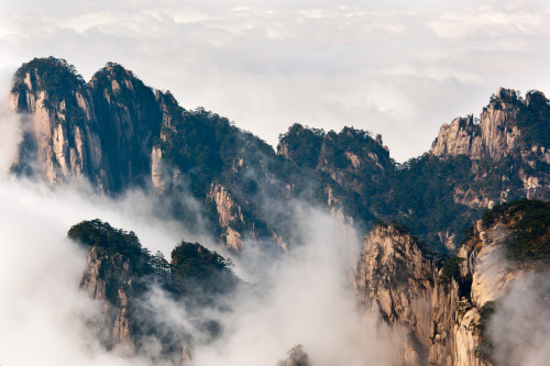 definitelydope:  Yellow Mountains (by t1ll)