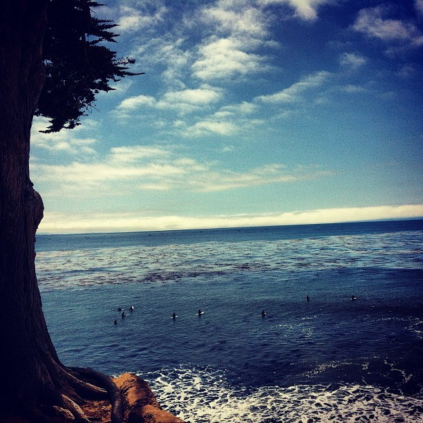 Santa Cruz surfers, here I'm! (The Hookにて。Instagramで撮影)