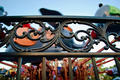 dashofdisney:  A View at Dumbo
