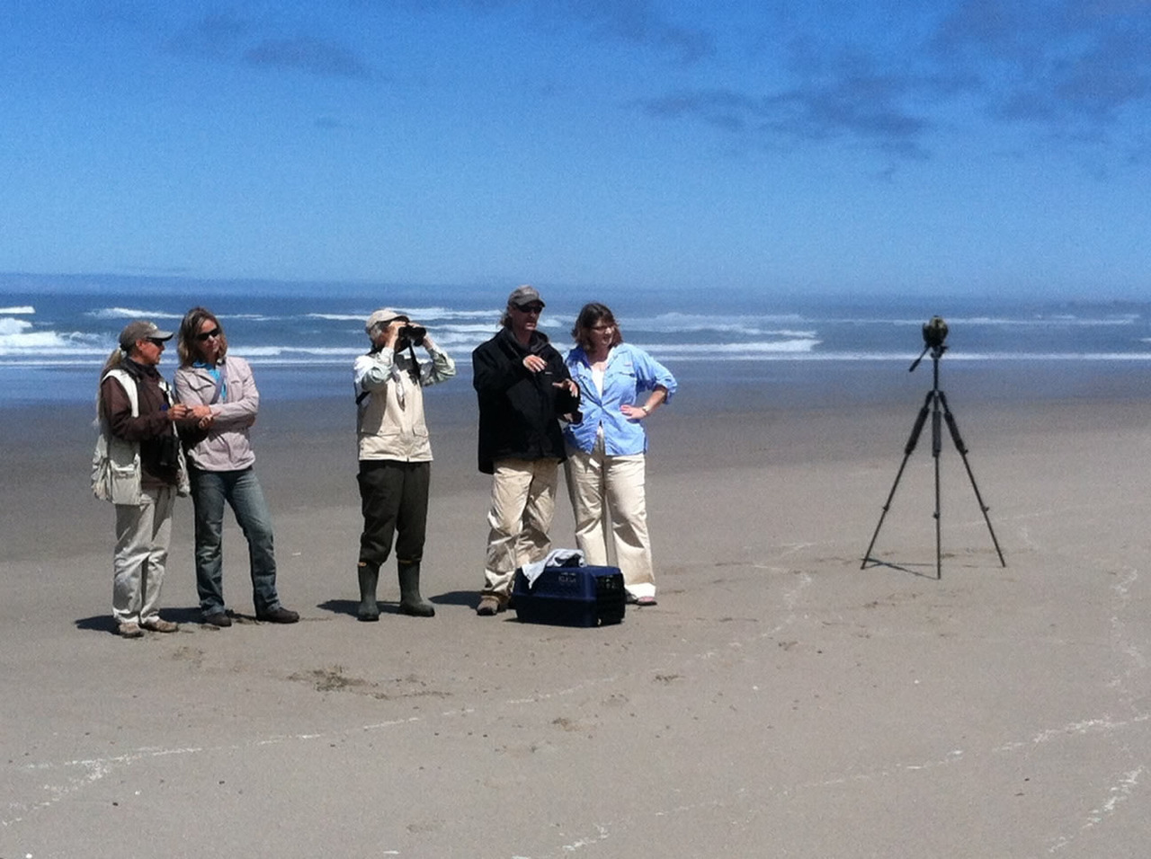 Our USFWS Pacific Region employees helped release a ready to fledge plover after a recuperation at the Oregon Coast Aquarium. Photo credit: USFWS