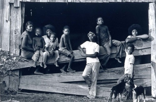 Roland L. Freeman (b. July 27, 1936): Burrell Children. Mississippi, August 1976, from the series Southern Roads/City Pavements, 1976/printed 1982 - gelatin silver print (Smithsonian)