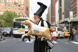 Vermin Supreme (Union Square)