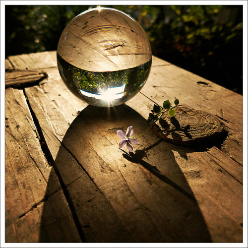 rain-storms:  (208/366) Crystal Ball [Explored July 27, 2012 - #48] by Free 2 Be on Flickr.