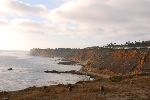Looking down the coast from the lighthouse. California lovin'. ~Sithara Reddy~