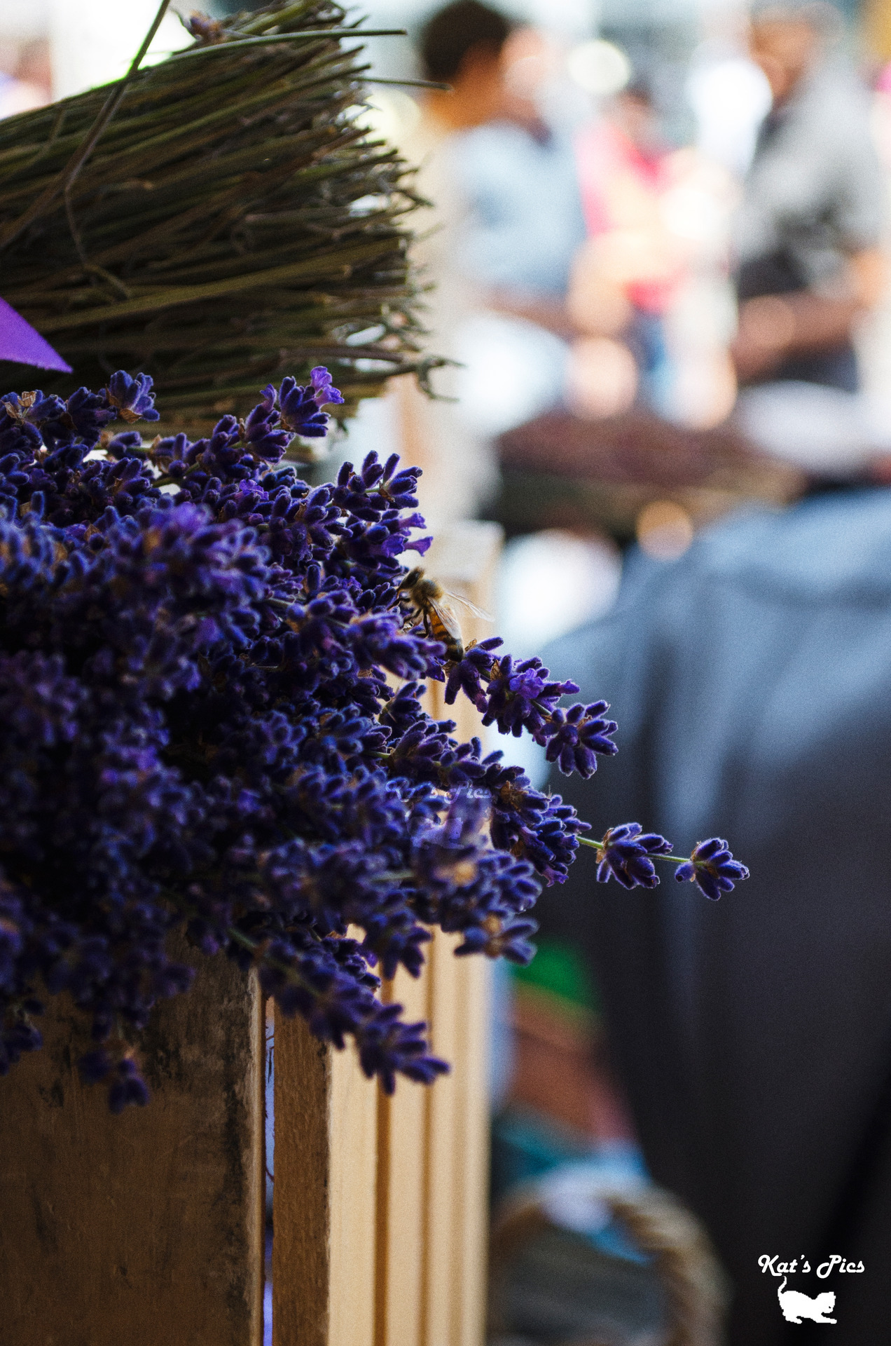 Fresh Lavender on Flickr. Fresh lavender at the Pike Place Market in Seattle. http://www.katheryns-gallery.com