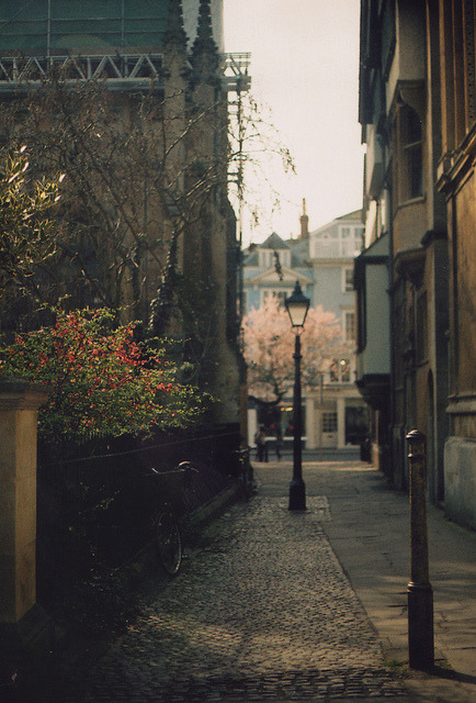 frumiouscumberbatch:  untitled by Sid Black on Flickr.