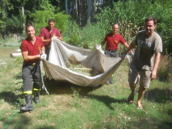 Firemen help Clark move more plants from the Galeazza Garden - and we begin removing aquatics; heavy!
