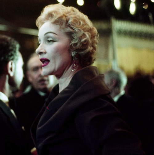 Marlene Dietrich at the premiere of Judy Garland's A Star is Born (1954).