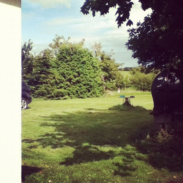 Half s shot of My back garden :) (Taken with Instagram)