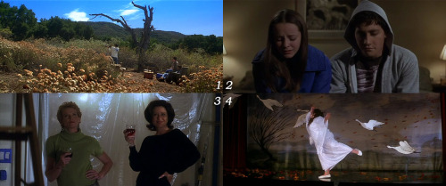 "1 movie - 4 frames. ""Donnie Darko"": 1-3-4-2"