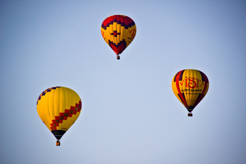 Vista Balloon Adventures in Newberg, OR.