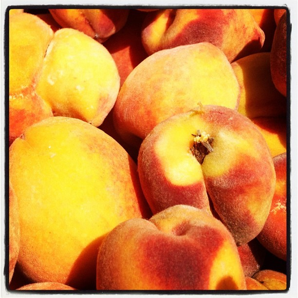 Peach picking in Fredericksburg! (Taken with Instagram)