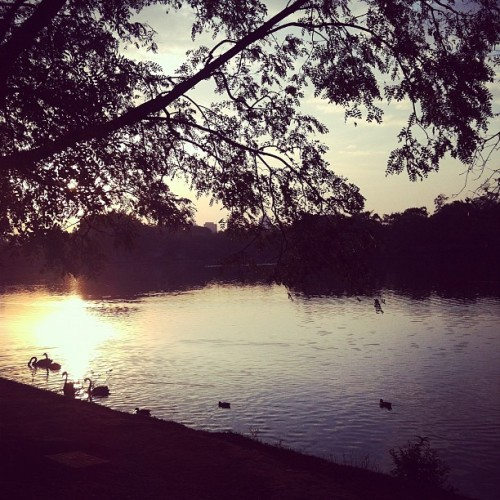 Taken with Instagram at Parque Ibirapuera