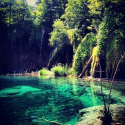 #waterfalls #landscape #lakes #water #croatia #'plitvice lakes' #plitvice #plitvika (Taken with Instagram)