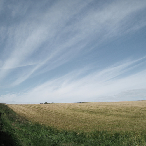 landyscape:  Friston by ben_patio on Flickr.