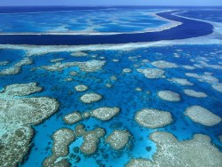 imgoftheday:  The Great Barrier Reef, Queensland, Australia