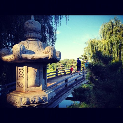 Japanese Garden  (Taken with Instagram at Chicago Botanic Garden)