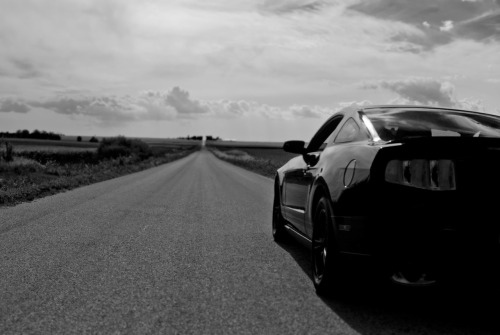Recipe for GTFO: Step 1: Add 1 Mustang to the straightest road to nowhere. Step 2: GTFO