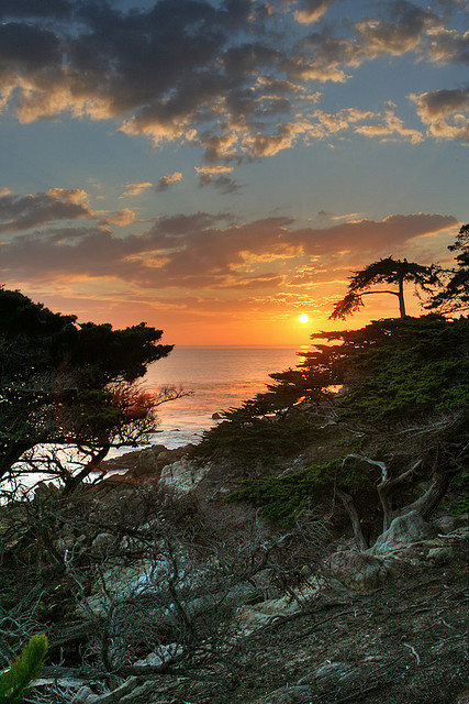 Sunset @ Lone Cypress Tree, 17 Mile Drive, California by Raj Hanchanahal Photography on Flickr.