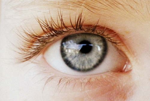 gildings:  eye close-up (by teacups & sailboats)