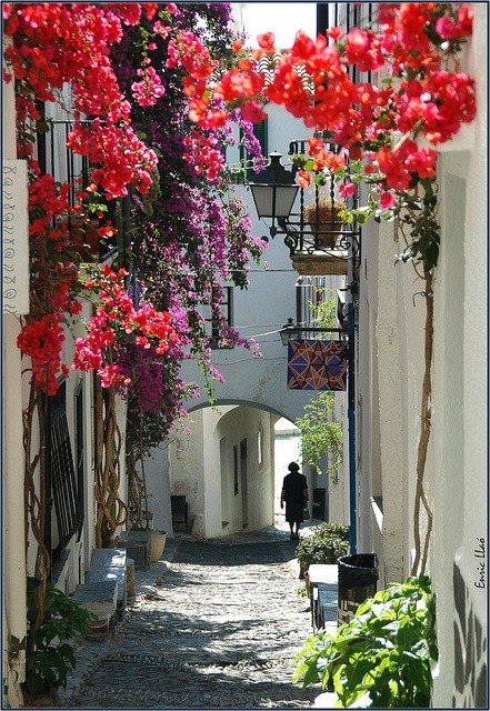 bluepueblo:  Flowered Street, Catalunya, Spain photo via jennifer