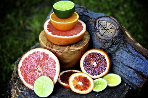 epicurious:  eleanor-secret-garden:  Citrus Fruits  Thank goodness they're in season right now!