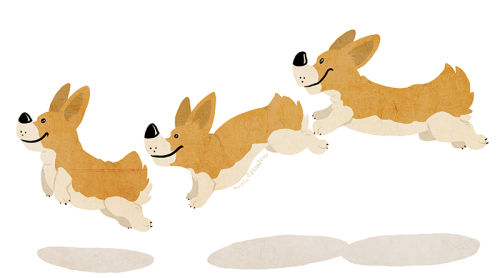 I don't care about the Olympics. All I care about is adorable fat corgis.