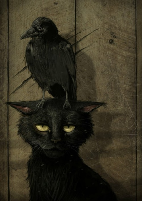 """The Raven and the Cat"" by Jeremiah Morelli"