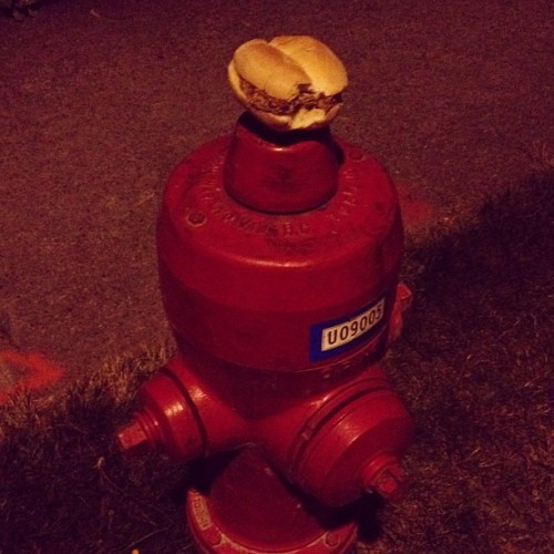 mii-lo:  Cover of my new album 'burger on a fire hydrant' (Taken with Instagram)  I want a thousand of them. The album and burger, I mean.
