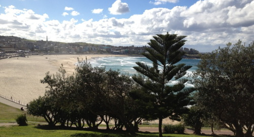 I was famished when we eventually made it to Bondi Beach which seems to be the Mecca of backpackers from around the world. MANY English and Irish accents to be heard. I guess they got cheap flights out because of the Olympics. We had a delicious breakfast and then sat in the sun for an hour, watching people surf and swim. I might add that it's the middle of winter here, so you can understand the appeal of the place. It's not the most beautiful beach in Australia (far from it), but it's probably the most recognisable. We caught a bus back to Bondi Junction (as I was promised), and had Japanese for lunch. But not the place with the bukkake menu. I just couldn't bring myself to. I guess I've just spent way too much time on dodgy internet sites :p
