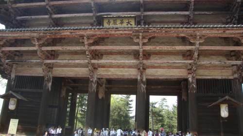 Entrance to Todaiji - Nara