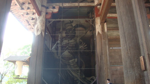 Caged Guardian - Todaiji, Nara